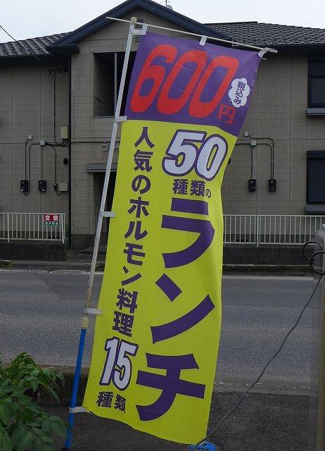 P1300194